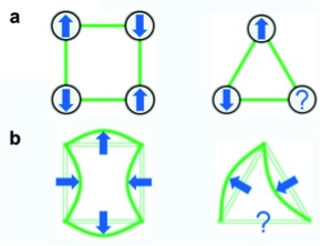 Fig. 3. (a) In antiferromagnetic systems nearest neighbor spins want to align in the opposite directions. This rule can be satisfied on the square, however due to geometrical frustration it is not possible on the triangle. (b) Buckled beams on frames want to preserve angles at joints to minimize the deformation energy. This can be realized for square frames, but not for the frustrated triangular frames.