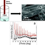 Sonication-Assisted Synthesis of Large, High-Quality Mercury-Thiolate Single Crystals Directly from Liquid Mercury