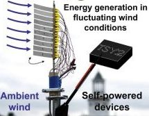 Harvesting ambient wind energy with an inverted piezoelectric flag